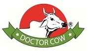 Doctor Cow