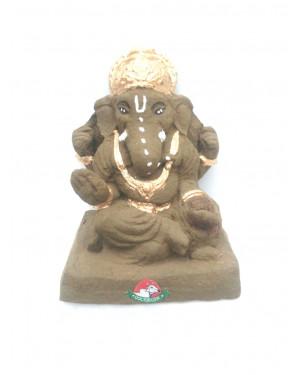 DR. COW Gomay Ganesha